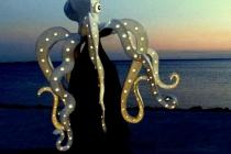 A la nuit tombée, la pieuvre sort de sa tanière...